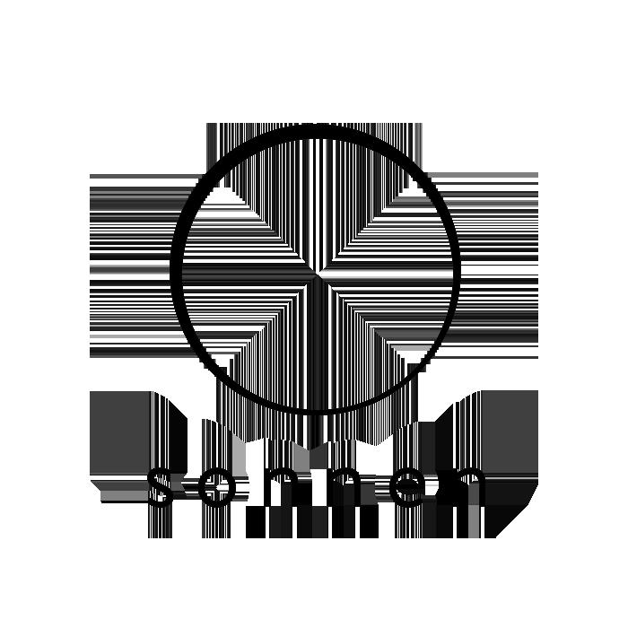 Logo Layers sonnen